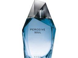 Perceive Soul