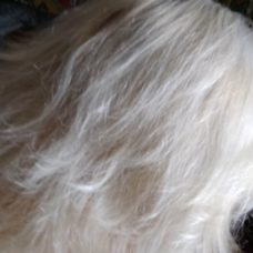 Ополаскиватель для волос Advance Techniques «Ослепительный блонд»